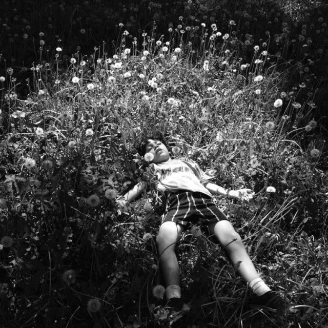 Boy lying in a field of flowers