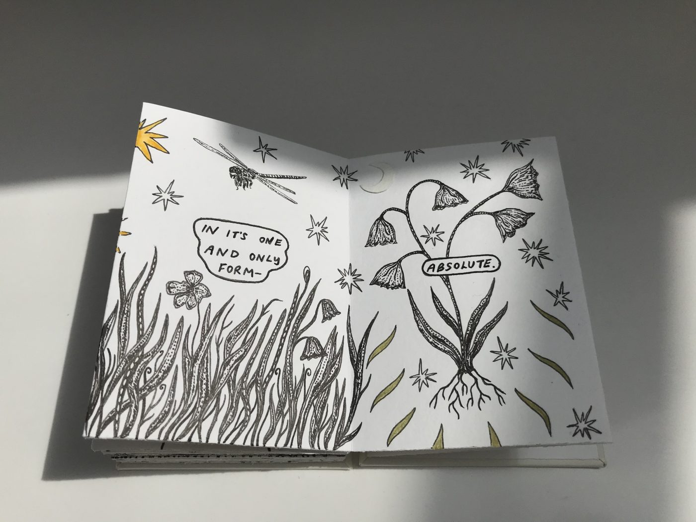 how to get your art book published - Wildflower Meadow by Petuniart