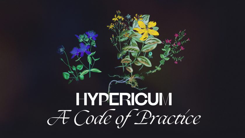 Organizing Against Precarity in the Arts - hypericum